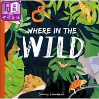 【中商原版】旷野 英文原版 Where in the Wild 动物百科绘本 儿童认知识物绘本