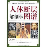 人体断层解剖学图谱 刘树伟 9787533132958 山东科学技术出版社
