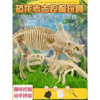 *考古挖掘玩具手工diy侏罗纪霸王龙骨架拼装模型儿童礼物