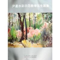 尹星水彩师范教学写生画集 尹星 绘 天津人民美术出版社 9787530559888