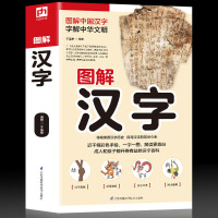正版图解汉字 画说汉字的故事 说文解字 汉字的演变过程 精辟图说展示汉字在的使用状况语言文字书籍 甲骨文象形文字 汉字