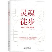 灵魂徒步 阳明心学管理智慧 9787301295120 北京大学出版社
