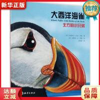 大西洋海雀 : 北方的小兄弟 [加]克莉丝汀・比伯・多姆 海洋出版社