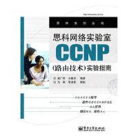 【二手书9成新】思科网络实验室CP(路由技术)实验指南梁广民9787121160714电子工业出版社