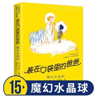 魔幻水晶球 书 单本 小布老虎丛书 杨鹏 新 6-7-8-9-10-12岁小三四五六年级课外阅读书籍 儿童文学小说 中国