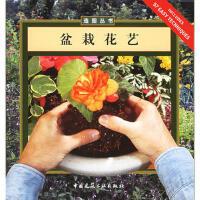 盆栽花艺 (美)麦克里里,王彩云 中国建筑工业出版社 9787112070510