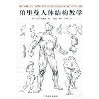 【正版全新直发】伯里曼人体结构教学 (美)乔治・伯里曼 9787807460848 广西美术出版社