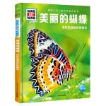 什么是什么・珍藏版(第4辑):美丽的蝴蝶