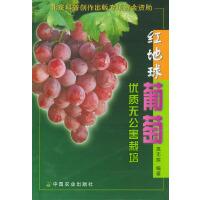 红地球葡萄优质无公害栽培
