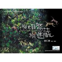 与大自然捉迷藏(畅销台湾近十年,大陆首次重磅推出,徐仁修荒野探秘,再现台湾惊艳容颜)