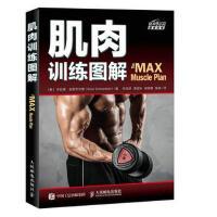 肌肉训练图解 9787115468710 [美] 布拉德・舍恩菲尔德(Brad Schoenfeld) 人民邮电出版社