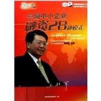中国中小企业融资28种模式 王铁军 6VCD