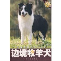 【新书店正版】边境牧羊犬文俸勇著9787503841644中国林业出版社