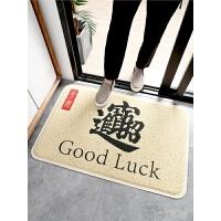 脚垫家用门外进门门口地毯门厅丝圈铺地入户蹭土门垫子入户门地垫
