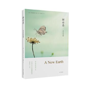 新世界:灵性的觉醒(全球销量700万册,《遇见未知的自己》作者张德芬译作)