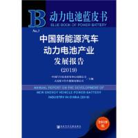 【正版直发】动力电池蓝皮书:中国新能源汽车动力电池产业发展报告(2019) 中国汽车技术研究中心 大连松下汽车能源有限