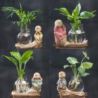 白掌水培植物玻璃瓶容器创意盆栽摆件袖珍椰子室内花卉水养富贵竹