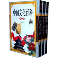 【二手旧书8成新】中华文化百科:图文版 李楠 辽海出版社 9787545108569