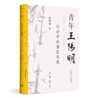 青年王阳明:行动中的儒家思想