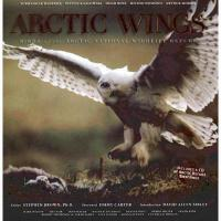 【预订】Arctic Wings: Birds of the Arctic National Wildlife