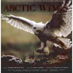【预订】Arctic Wings: Birds of the Arctic National Wildlife