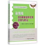 彩图版222种葡萄病虫害识别与防治(的种植业精品图书)
