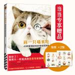 画一只喵来吃:40种萌宠配美食的色铅笔教程(像照片一样逼真的色铅笔猫猫和美食!学画超写实色铅笔技法,这一本就满足!)