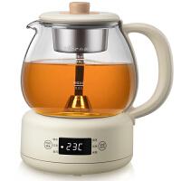 小熊(Bear)煮茶器 养生壶 蒸汽喷淋式玻璃加厚迷你小型黑茶电茶炉 办公室小容量电热泡煮茶壶 微电脑式 ZCQ-A10