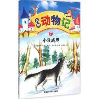 西顿动物记.7 小狼威尼 小学生课外阅读书籍 四五六年级课外阅读 世界名著 学生 益智游戏 励志书籍 课外阅读书籍 少