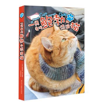 一只名叫鲍勃的流浪猫(pdf+txt+epub+azw3+mobi电子书在线阅读下载)