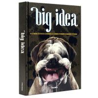 Big Idea 大创意 全球广告创意 广告设计书籍 平面设计图书 日常生活 奇异景观 插画