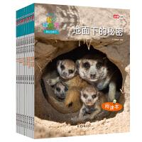 小小自然馆・地上与地下(全彩10册)孩子的第一套自然科普书