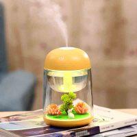usb加湿器 创意微景观加湿器七彩小夜灯家用雾化加湿器USB迷你香薰加湿器