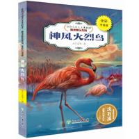 动物小说大王沈石溪・精读酷玩系列(全彩升级版):神风火烈鸟