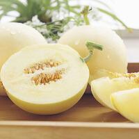 【包�]】�西�良甜瓜5斤�b�糁�4.5-5斤