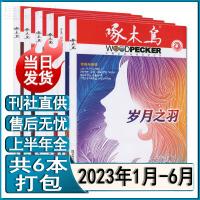 啄木鸟杂志2021年1/2/3/4/5月共5本打包悬疑推理公安侦探法制文学