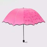 泰蜜熊遇水开花黑胶晴雨两用单人伞防晒伞黑胶伞太阳伞