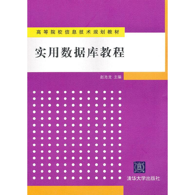 实用数据库教程(高等院校信息技术规划教材) PDF下载