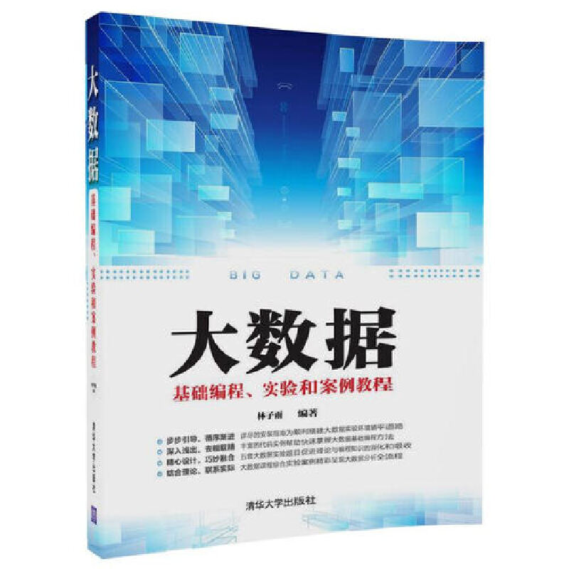 大数据基础编程、实验和案例教程 PDF下载